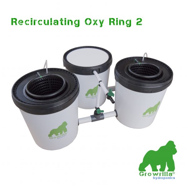 Sistema Idroponico Recirculating Oxy Ring 2 Growrilla