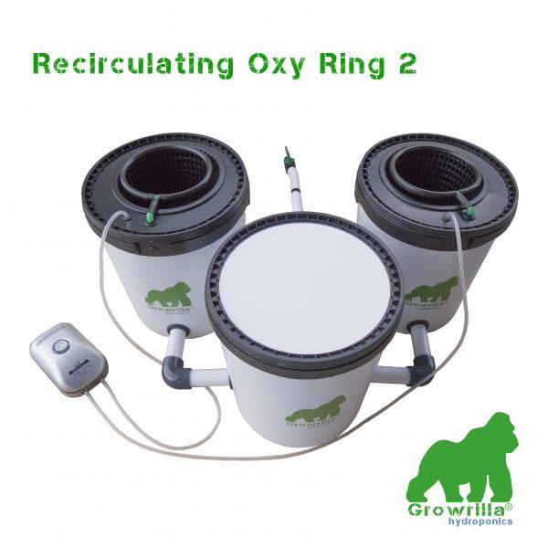 Sistema Idroponico Recirculating Oxy Ring 2 Growrilla