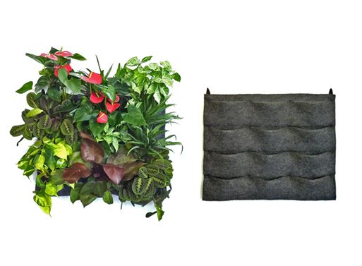 Verde Verticale Moduli da 12 Tasche - Giardino Pensile